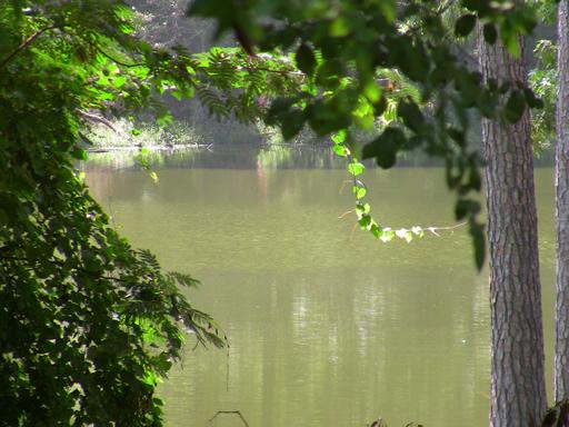 Lakeside Long Lake